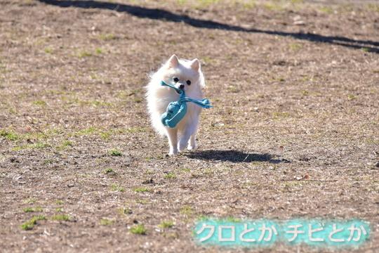 540px20160210_MiTo-01.jpg