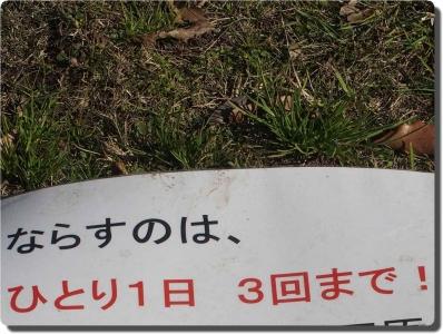 mini_24_3kai_PC284790.jpg
