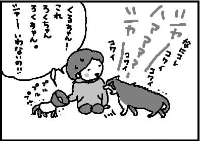 413-5.jpg