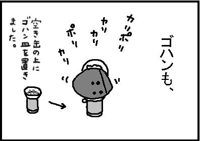 416-2.jpg