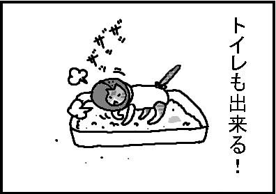 416-3.jpg