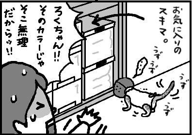 416-4.jpg