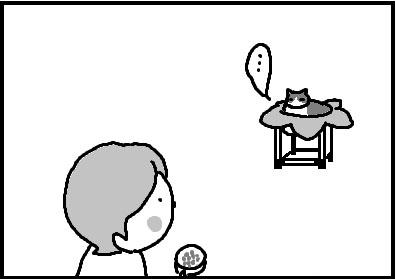 418-4.jpg