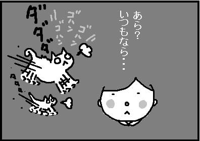 418-5.jpg