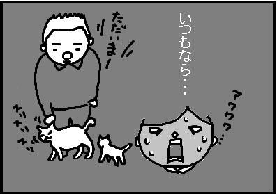 418-8.jpg