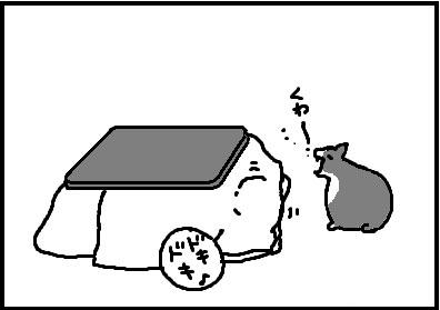 421-6.jpg