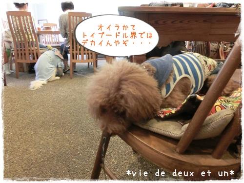 20150905blog13.jpg