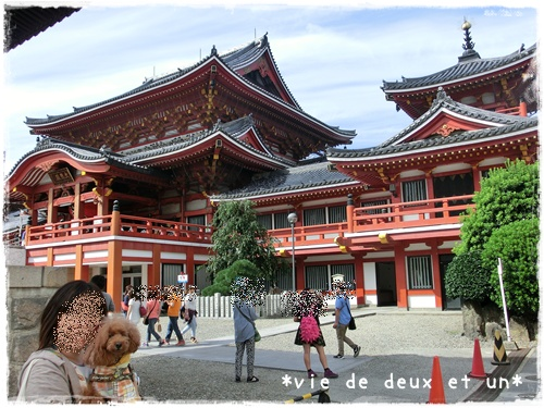 20150919blog8.jpg