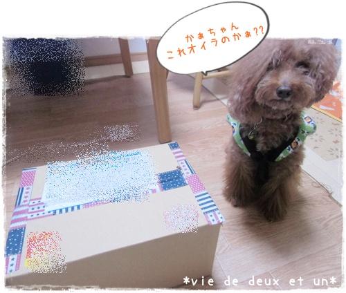 20151024blog1.jpg