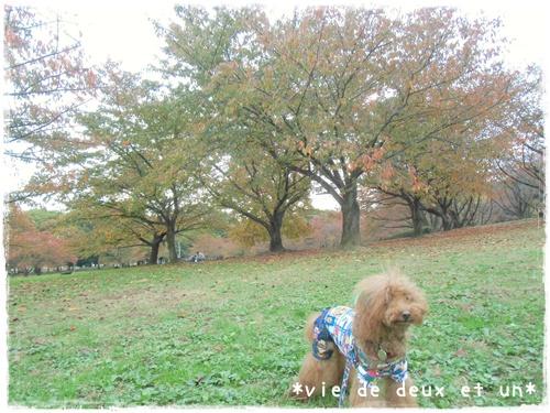 20151107blog1.jpg