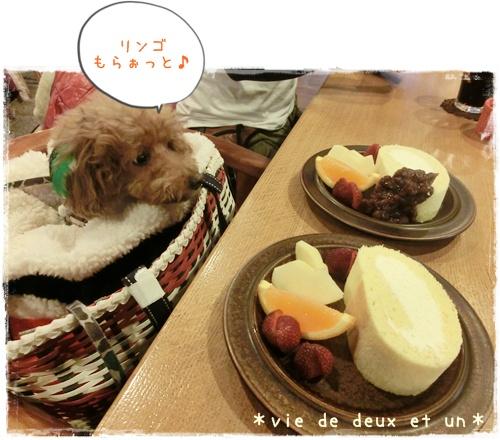 20151220blog9.jpg