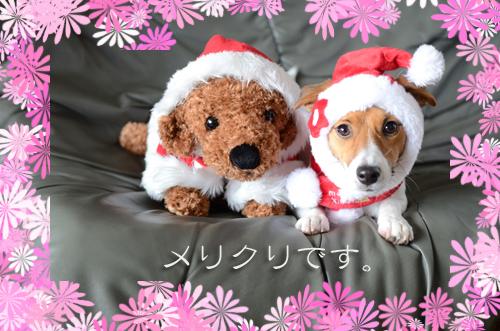 2015-12-26-クリスマス-032