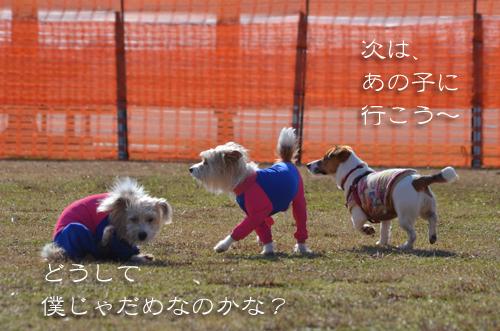 2016-01-31-東海広場-049