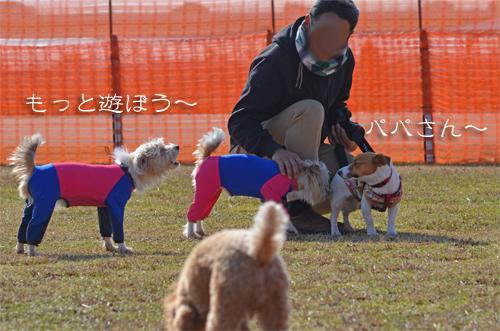 2016-01-31-東海広場-044