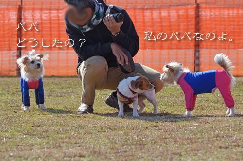 2016-01-31-東海広場-030