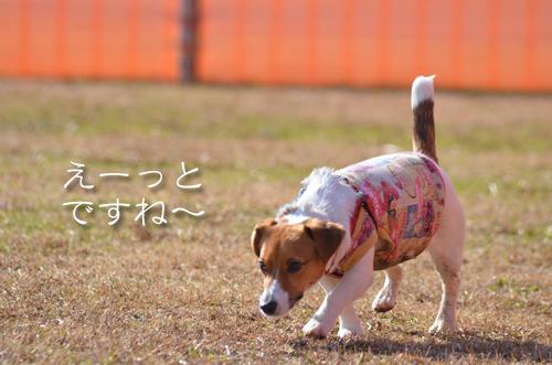 2016-01-31-東海広場-011