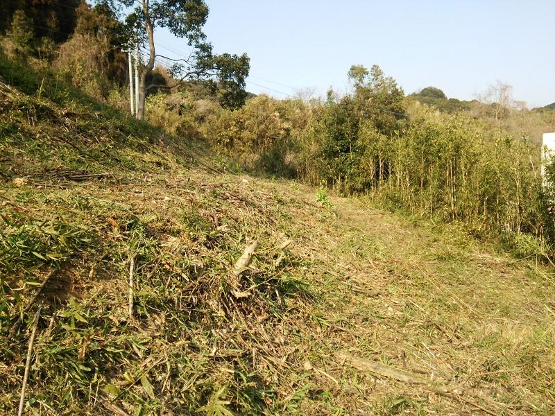 竹刈後160303-2