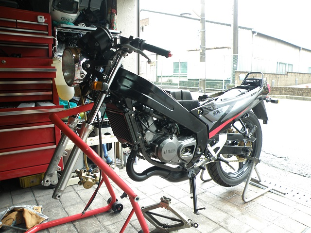 TZR12502900.jpg