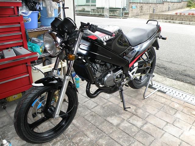 TZR12502916.jpg