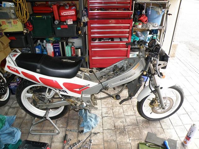 TZR12502989.jpg