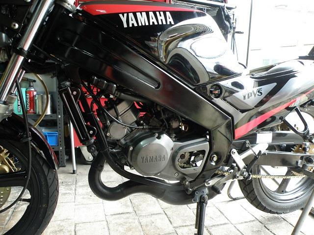 TZR12503045.jpg