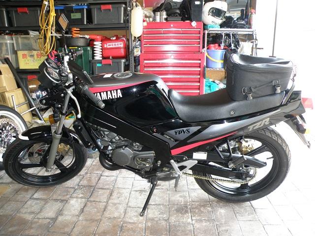 TZR12503103.jpg