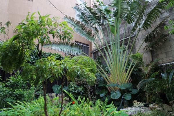浮島ガーデン