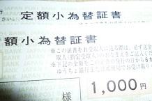 P1100240.jpg