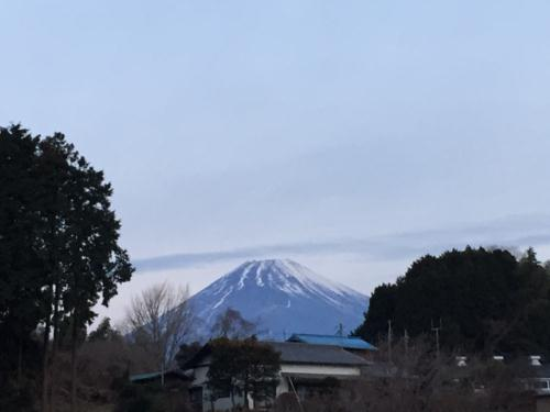 2010-01-10-1.jpg