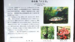 加賀野八幡神社名水 (15)_R