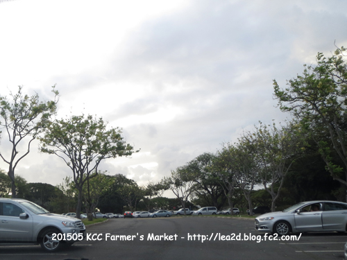 2015005 KCC ファーマーズマーケット