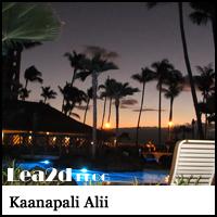 Kaanapali Alii(カアナパリアリイ)  に宿泊したブログ