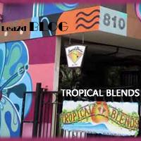 ハワイのTROPICAL BLENDS (トロピカル・ブレンズ)でSUPボードを買う