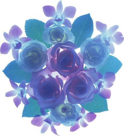 flower4829s.jpg