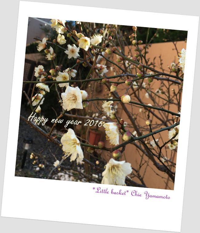 2016-ブログ用梅