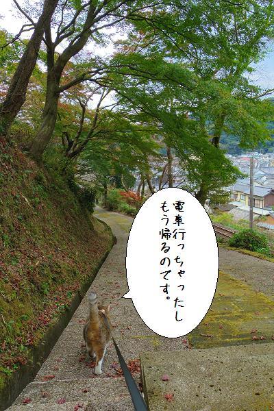 陶山神社12