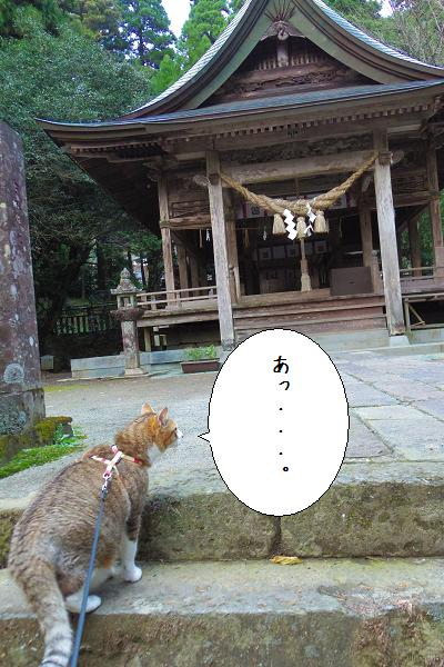 国造神社8