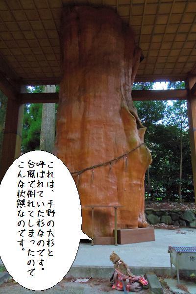 国造神社13