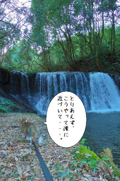 狸穴の滝5