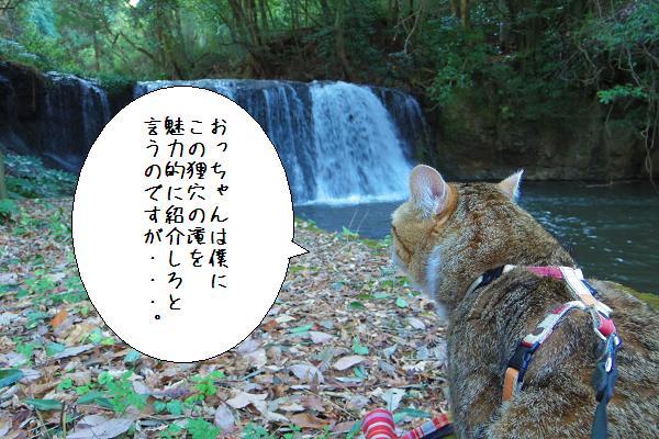 狸穴の滝3