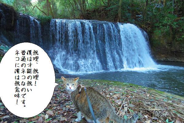 狸穴の滝7