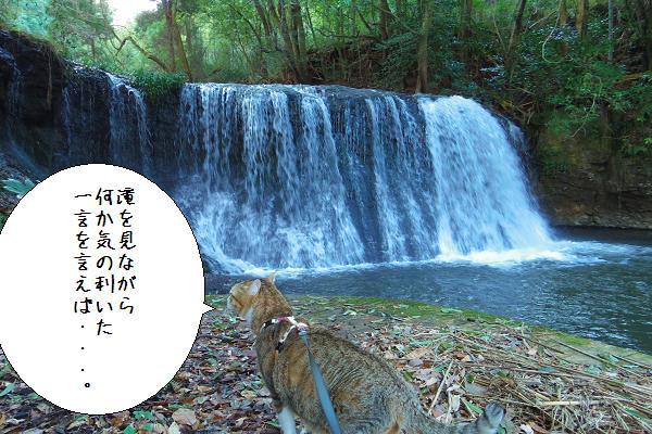 狸穴の滝6
