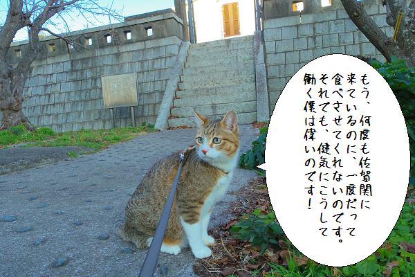 関埼灯台3
