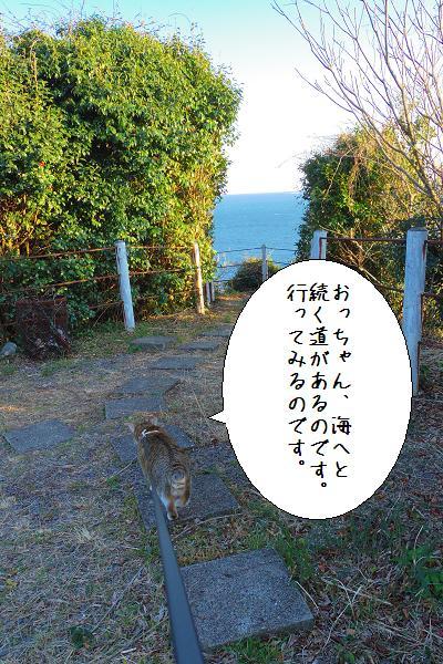 関埼灯台6