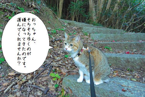 関埼灯台12