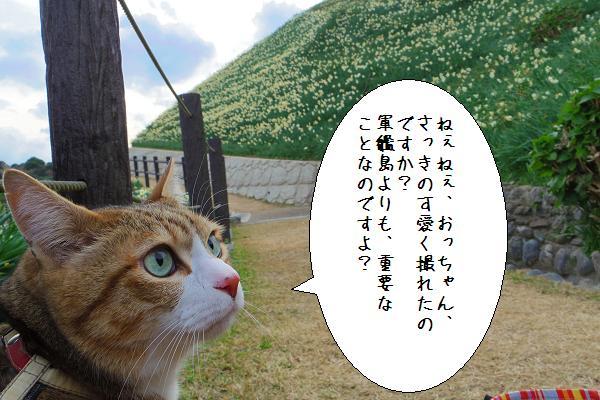 水仙の里公園13