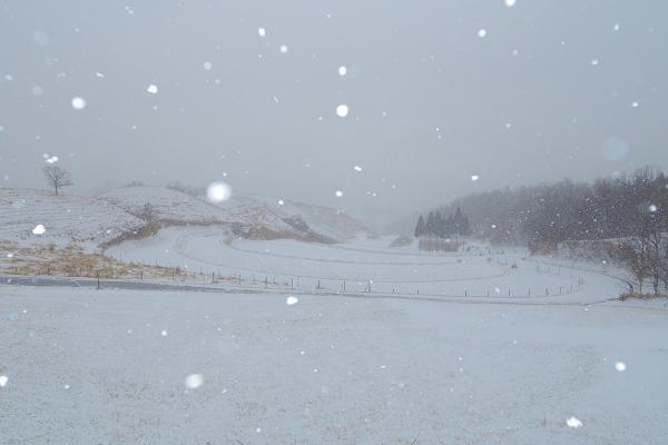 冬の山吹水源2