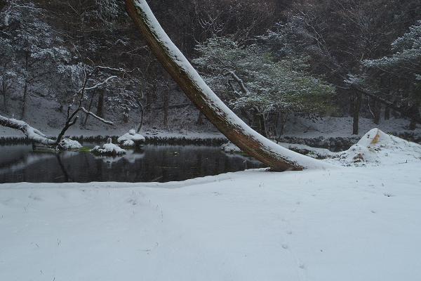 冬の山吹水源3