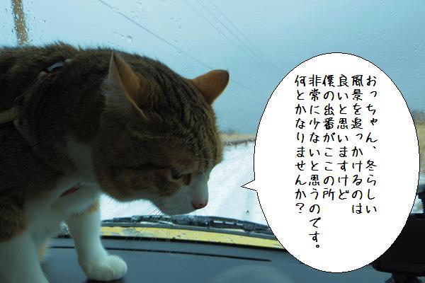 仙酔峡12