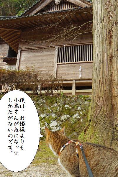 八女津媛神社8